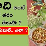 Know the history of Ugadi festival