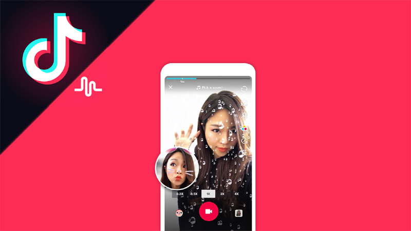 union IT ministry directed google and apple to remove tik tok app from their playstores