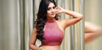 nabha-natesh-to-romance-with-mega-hero