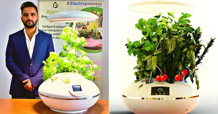 grow plants in home with this automated smart garden device